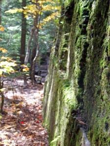 Baraga County Canyon Falls trail .jpeg